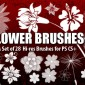 28 Hi-Res Flower Brushes for Photoshop