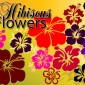 18 Hibiscus Flowers Photoshop Brushes