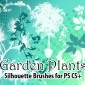 24 Garden Plants Photoshop Brushes