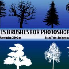 15 Tree Silhouettes Photoshop Brushes