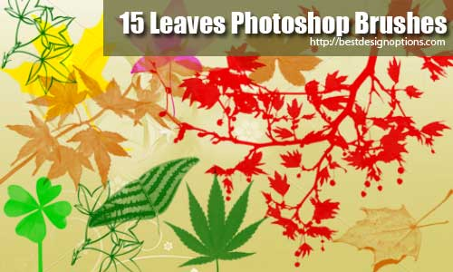 photoshop-brushes-leaves-02
