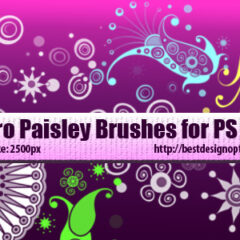 16 Retro Paisley Designs Photoshop Brushes