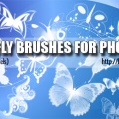 20 Butterfly Photoshop Brushes Vol. 1