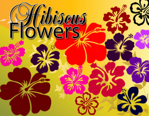 Hibiscus Flowers Photoshop Brushes
