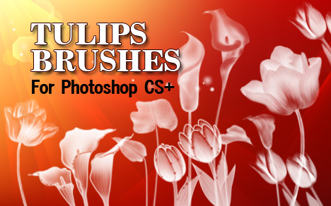 tulip flowers photoshop brushes