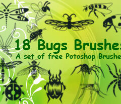 18 Insect Clip Art Brushes
