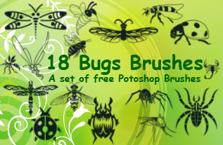 insect clip art Photoshop brushes