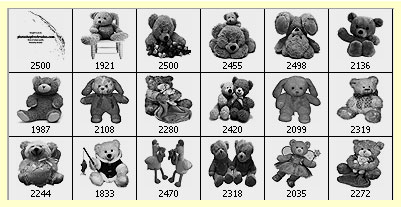 teddy bear clip art Photoshop brushes