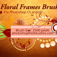 18 Floral Frame Photoshop Brushes