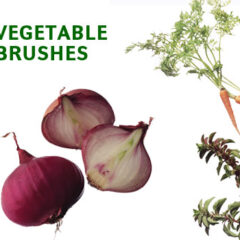 17 Vegetable Pictures as Photoshop Brushes