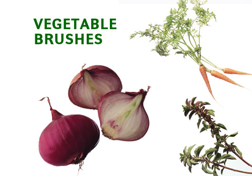 vegetable pictures photoshop brushes