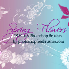 Spring Flowers: 18 Free Photoshop Brushes