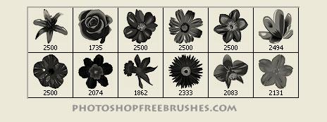spring flowers photoshop brushes