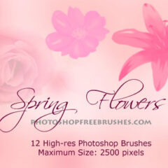 Spring Flowers Photoshop Brushes Vol. 2