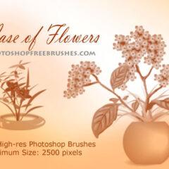 Free Photoshop Brushes: Vase With Flowers