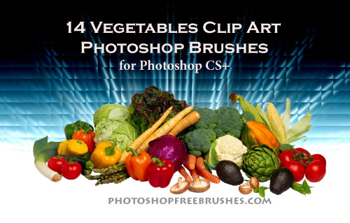 vegetable clip art Photoshop brushes
