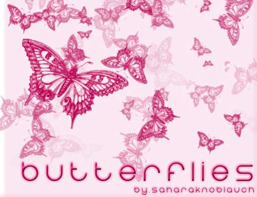 butterfly photoshop brushes