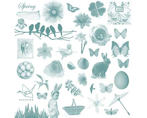butterflies and spring flowers photoshop brushes