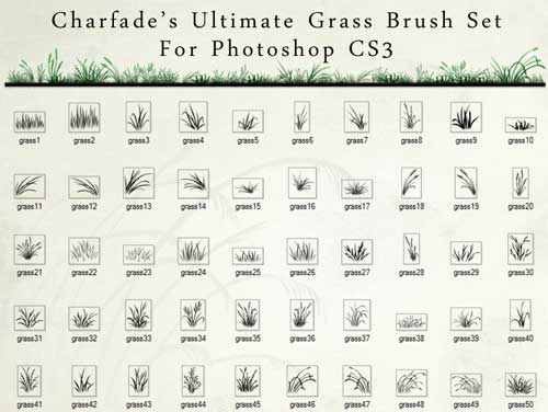 grass background photohop brushes