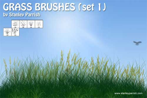 free grass photoshop brushes