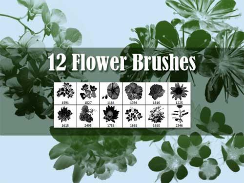 shadow flowers photoshop brushes
