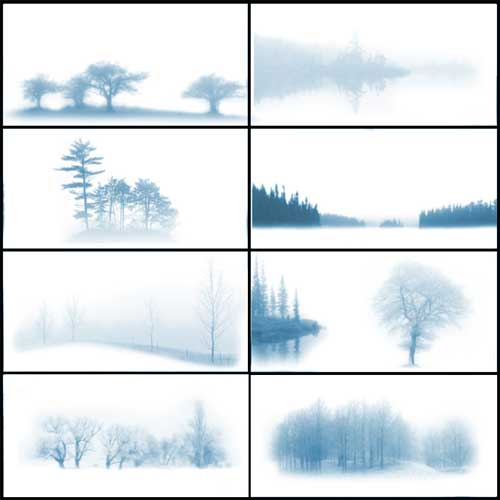 misty trees roads photoshop brushes