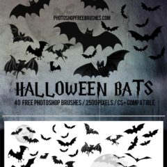 21 Halloween Bats Brushes for Photoshop