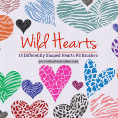 14 Wild Hearts Photoshop Brushes + PNG Images