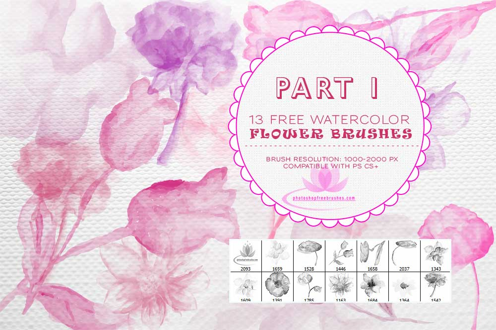 free-watercolor-flower-photoshop-brushes