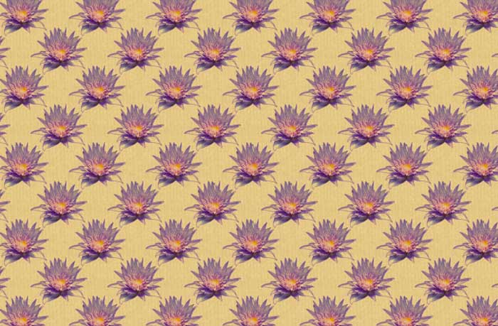 lotus-flower-patterns-3
