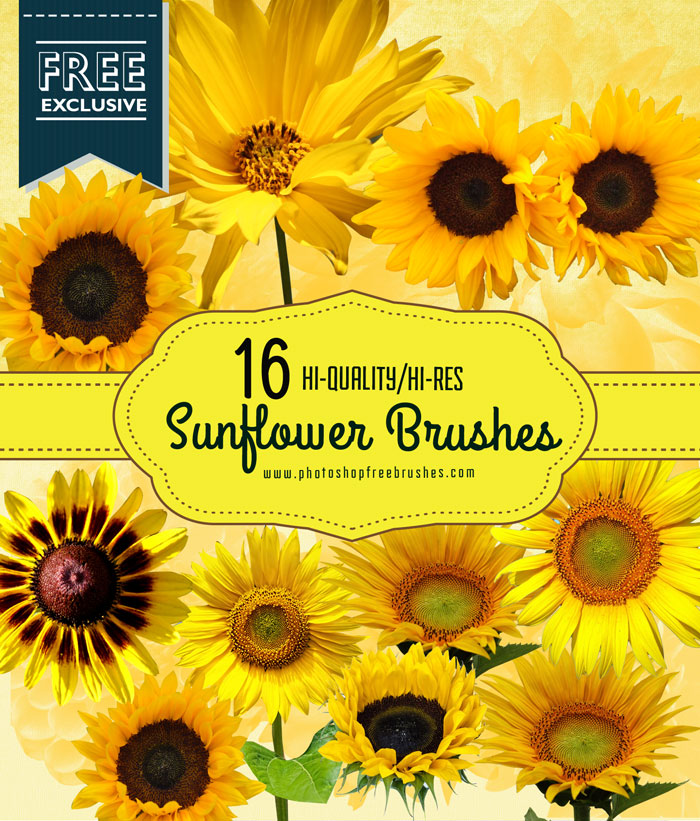 sunflower-brushes-1