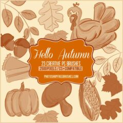 23 Thanksgiving and Autumn Hand-drawn Photoshop Brushes