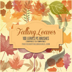 100+Autumn Leaves Photoshop Brushes