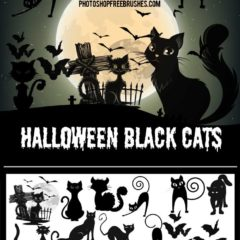 15 Black Cats Halloween Photoshop Brushes
