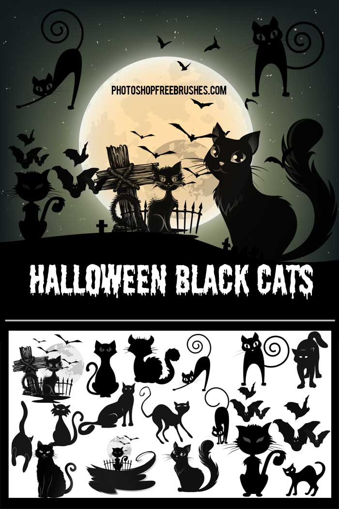 halloween black cats