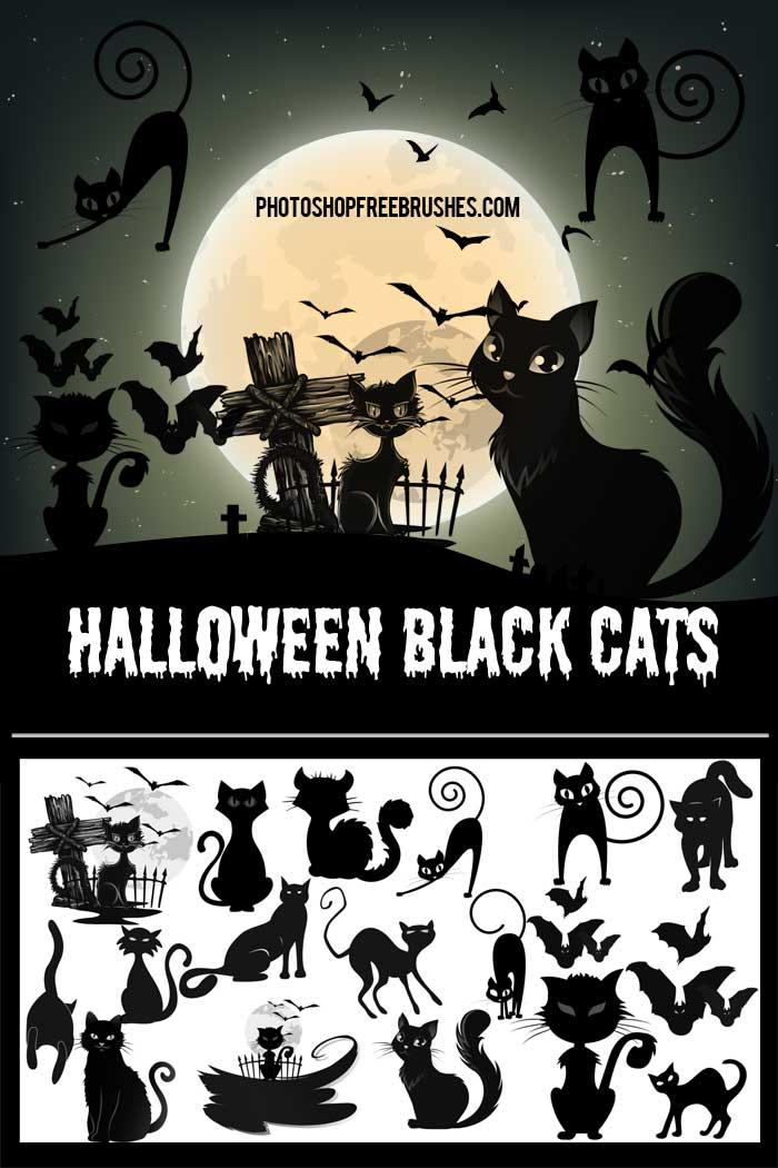 halloween-black-cats