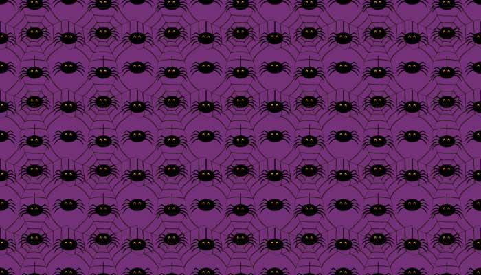 halloween-spider-pattern