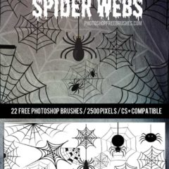 22 Free Halloween Spider Web Brushes
