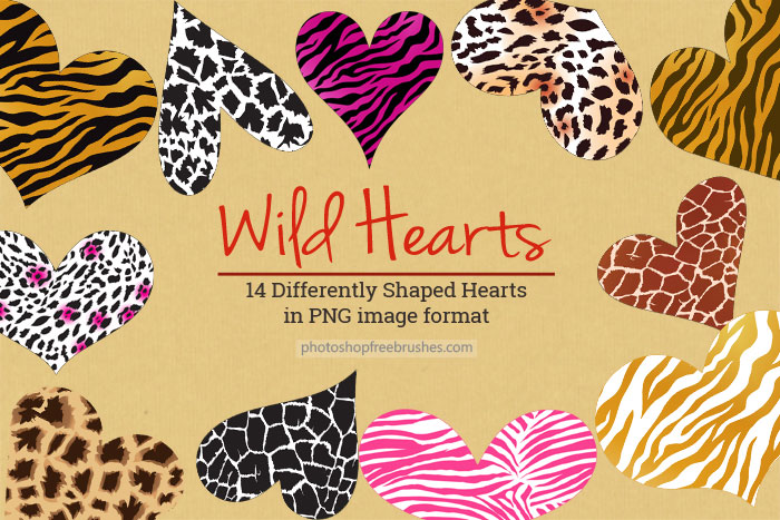 wild-hearts-png-1