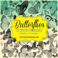 23 Butterfly Brushes Great for Making Nature-Themed Designs