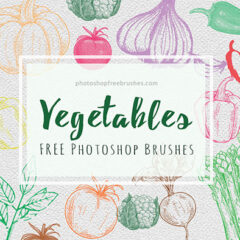 21 Free Sketched Vegetables Brushes for Photoshop