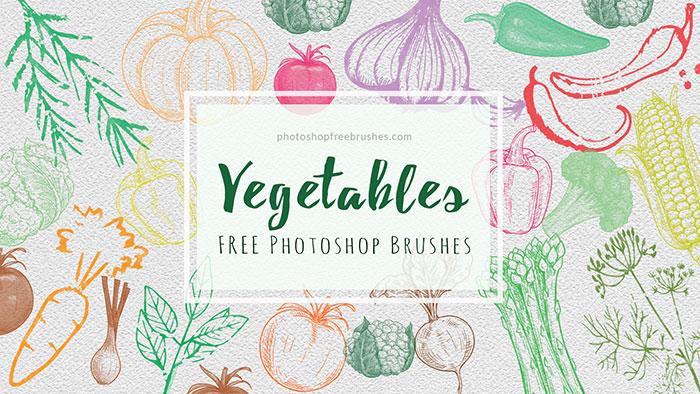 sketched vegetables brushes