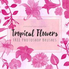 Free Tropical Flowers Brushes for Summer-Themed Projects