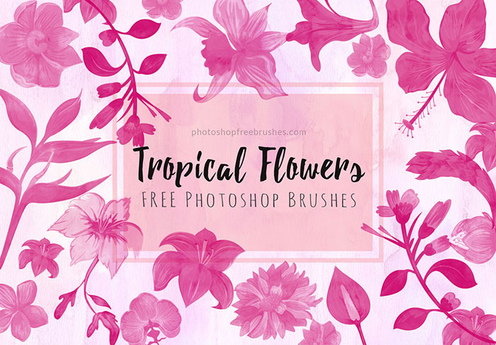 tropical flowers brushes