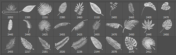 tropical leaves brushes