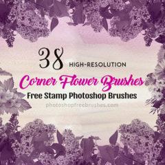 38 Free Corner Flower Brushes for Photoshop