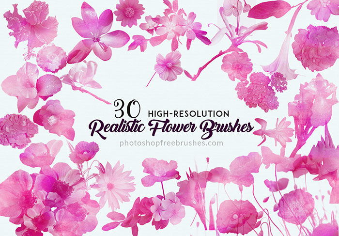 realistic flowers brushes