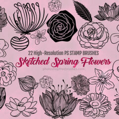 22 Artistically Sketched Spring Flowers Brushes to Download Free