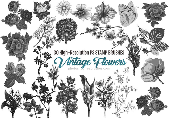 vintage watercolor flowers brushes