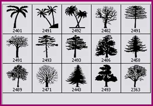 15 Tree Silhouettes Photoshop Brushes Photoshop Free Brushes